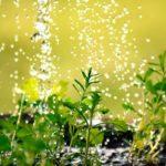 irrigazione_